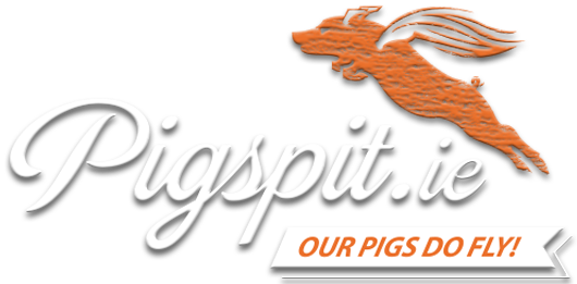 Pig On A Spit Roast Barbeque Caterers